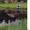 Усадьба Тихая отдых в сказочно красивом месте на берегу озера Обстерно #276755