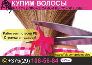 Покупка волос Дорого в Витебск. - Изображение #1, Объявление #1449870